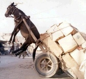 A Horse & Cart with the horse stuck in the air due to his over-heavy workload.